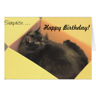 Feliz aniversario da surpresa…! cartão comemorativo