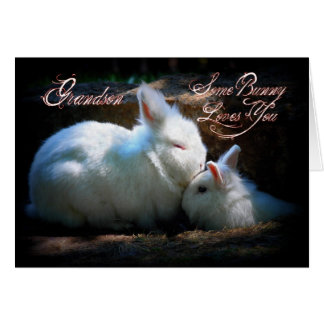 Feliz aniversario de beijo dos coelhos do neto cartão comemorativo
