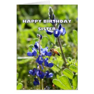 Feliz aniversario de Bluebonnet de Texas da irmã Cartão Comemorativo