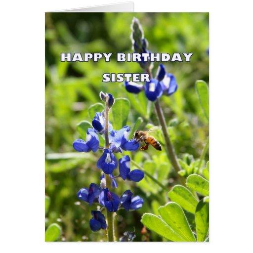 Feliz aniversario de Bluebonnet de Texas da irmã Cartoes