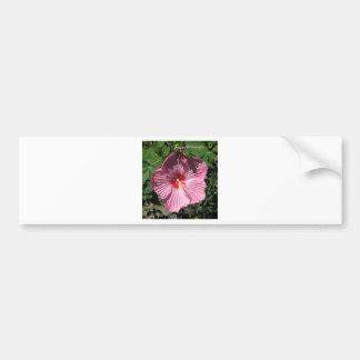 FELIZ ANIVERSARIO do hibiscus COR-DE-ROSA Adesivo Para Carro