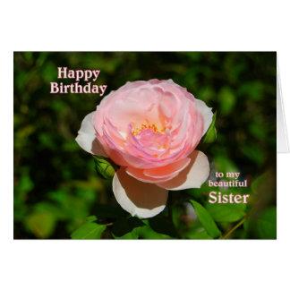 Feliz aniversario do rosa do rosa à irmã cartão comemorativo