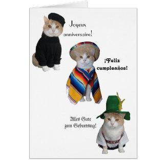 Feliz aniversario engraçado do gato/gatinho em sei cartões