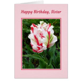 Feliz aniversario, irmã cartão comemorativo