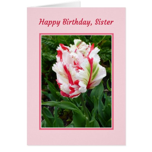 Feliz aniversario, irmã cartão