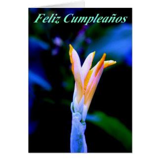 Feliz Cumpleanos Cartão Comemorativo