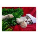 Feliz Navidad 3 Cartão Comemorativo