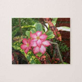 Festa tropical da flor - rosa vívido quebra-cabeça