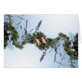 Festão da borboleta cartão