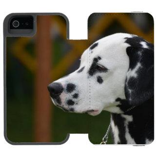 Filhote de cachorro Dalmatian bonito
