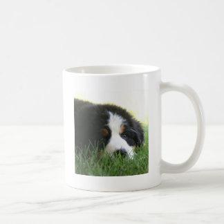 Filhote de cachorro de Bernese Caneca De Café