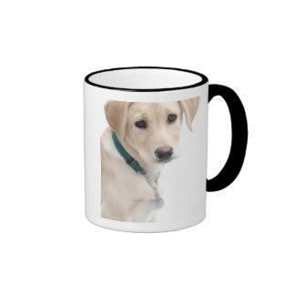 Filhote de cachorro de labrador retriever, SR.) Caneca