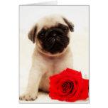 Filhote de cachorro do Pug e cartão cor-de-rosa