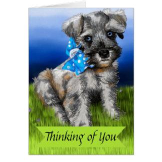 Filhote de cachorro do Schnauzer diminuto que Cartão