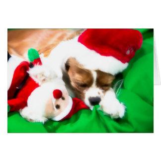 Filhote de cachorro do sono do Natal com o cartão