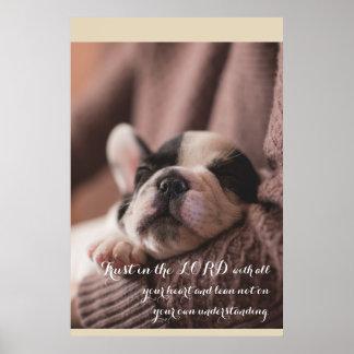 Filhote de cachorro do sono, poster cristão