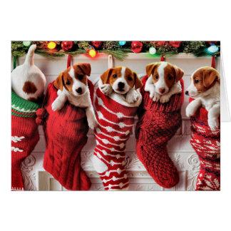 Filhote de cachorro-Enchido armazenando o cartão