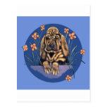 Filhote de cachorro enrugado pequeno do Bloodhound Cartão Postal
