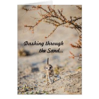 Filhote de cachorro galhardo do meerkat - cartões