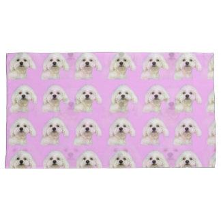 Filhote de cachorro maltês no rosa