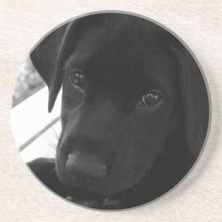 Filhote de cachorro preto do laboratório porta copos de arenito