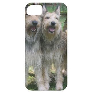 Filhotes de cachorro de Berger Picard Capa Para iPhone 5