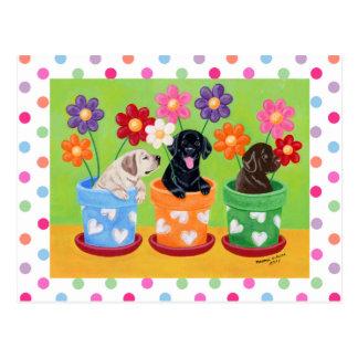 Filhotes de cachorro de Labrador do pote de flor Cartão Postal