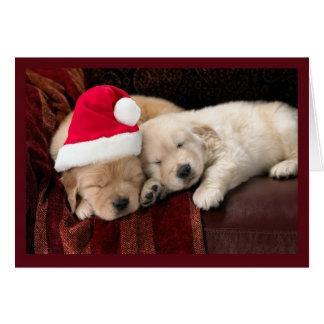 Filhotes de cachorro do Natal Cartão Comemorativo