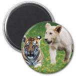 Filhotes do leão & de tigre no jogo ima