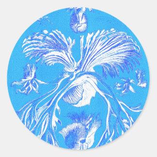 Filicinae no fundo azul adesivo redondo
