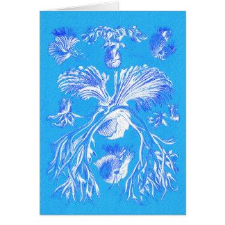 Filicinae no fundo azul cartão comemorativo