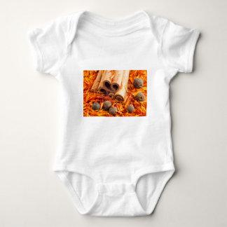 Fim-acima das especiarias e das ervas da cozinha body para bebê