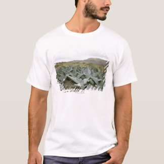 Fim-acima de plantas de deserto, Presidio, Texas, Camiseta