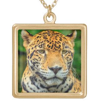 Fim-acima de uma cara do jaguar, Belize Colar Banhado A Ouro
