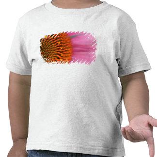 Fim-acima de uma flor do cone no verão, tshirts