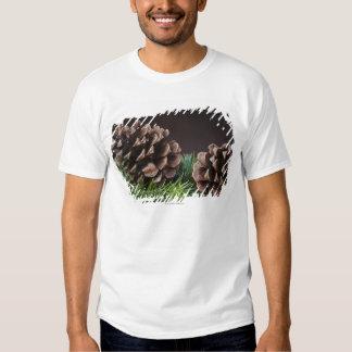 Fim-acima do cone do pinho t-shirt
