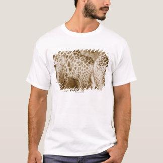 Fim-Acima do parque nacional de Kruger dos girafas Camiseta