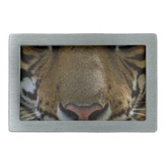 Fim da cara do tigre acima