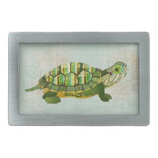 Fivela de cinto da tartaruga do jade