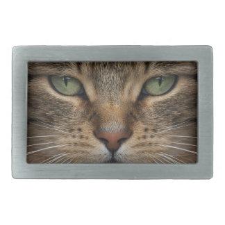 Fivela de cinto de Rect da cara do gato de gato