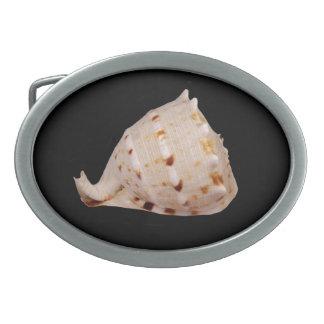 Fivela de cinto de Shell do Conch