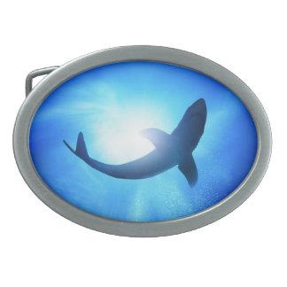 Fivela de cinto do Oval do tubarão