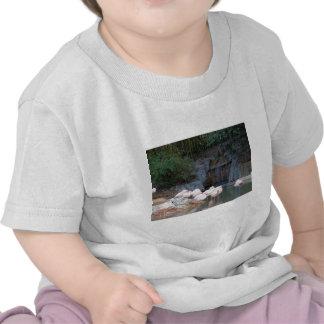 Flamingo e cachoeira t-shirt