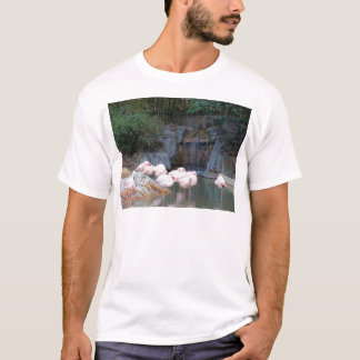 Flamingo e cachoeira tshirt