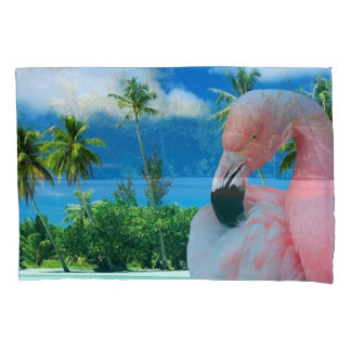 Flamingo e praia