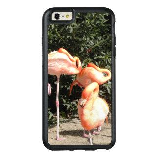 Flamingos do sono