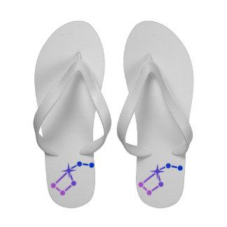 Flip-flops da estrela