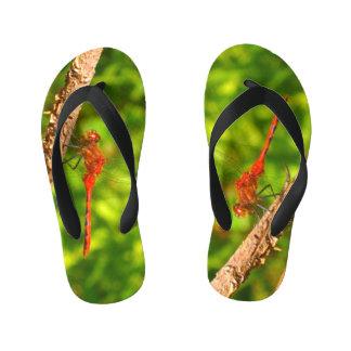 flip-flops da libélula chinelos infantis