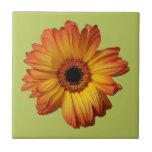 Flor alaranjada ensolarada da flor do gerbera azulejo de cerâmica