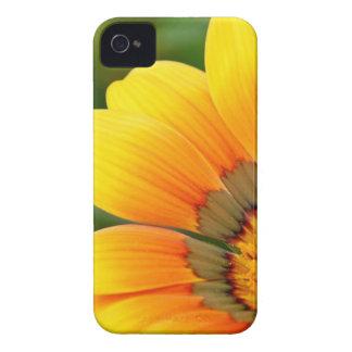 Flor amarela capa para iPhone 4 Case-Mate